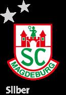 sponsor_logosilber